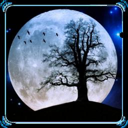 art moonlightmagiceffect freetoedit scmoon moon