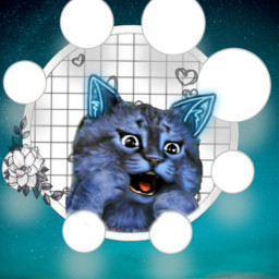 freetoedit bluecat leonard_thecat leonard