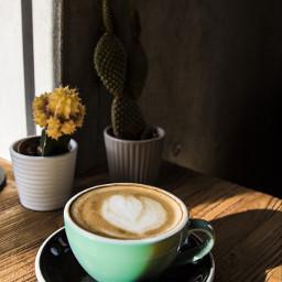 freetoedit capuccino coffeecup coffeeshop photography pccoffeecup