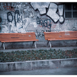 bench graffiti streetphotography freetoedit