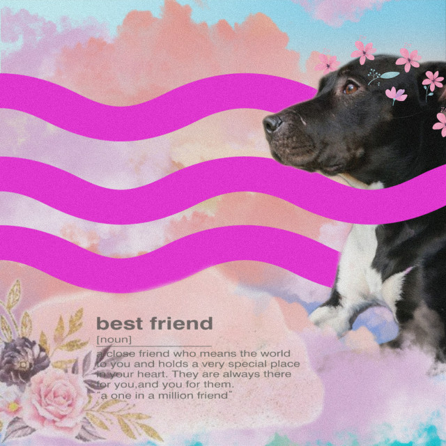 #freetoedit #bestfriend #mygirl #dog #editbyme #bestie #furbaby #replay