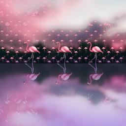 freetoedit flamingos lakeside reflections emojiart ecemojibackgrounds emojibackgrounds