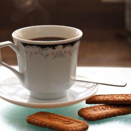 freetoedit coffe taza caf cup pccoffeecup
