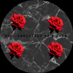freetoedit rosesarebeautiful beautiful sticker