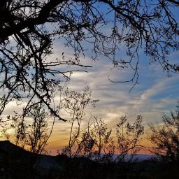 sillhouette sunset arizonasunset sunset_pics sunetlovers