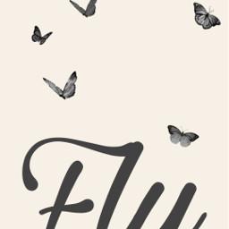 freetoedit butterflys butterflies fly inspirational ecphonewallpapers phonewallpapers