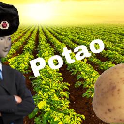 stonks slav potato farmer blyat