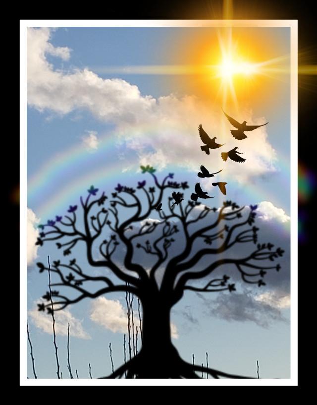 #freetoedit #treeoflife #beautiful #sunshine #