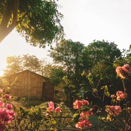 photography zenfone5 zenfone mobilephotography zamboanga