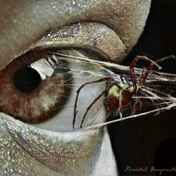 spider surreal eye freetoedit web