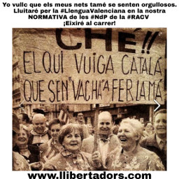 llenguavalenciana ndp racv
