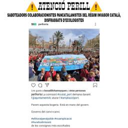 llibertadors ¡𝙋𝘼𝙍𝙀𝙈 valencianlanguageisnotcatalan valenciaisnotcatalonia llenguavalenciana ndp