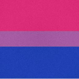 bisexual bisexuality bisexualpride bisexualflag ogbt
