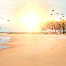 freetoedit editedbyme summer beach sunny