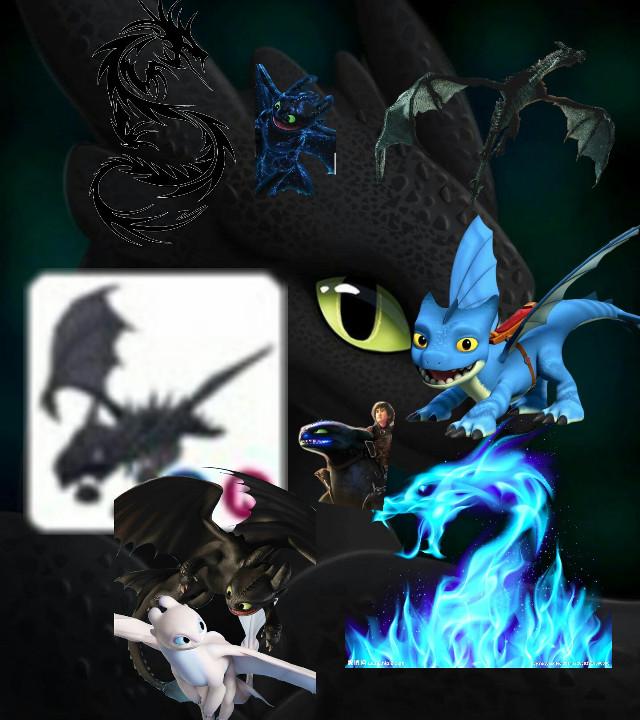 dragonloverforlife