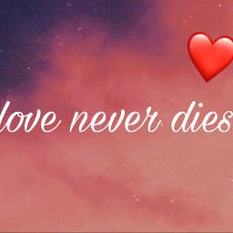 freetoedit loveneverdies tvd love