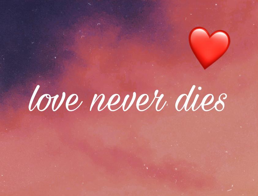 #freetoedit #loveneverdies #tvd #love