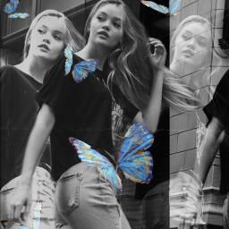 freetoedit butterflies holga1 holga glitch