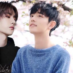 wangyibo xiaozhan ship seanxiao couple