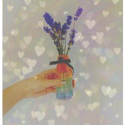 flowers rainbow heartbrush hearts freetoedit