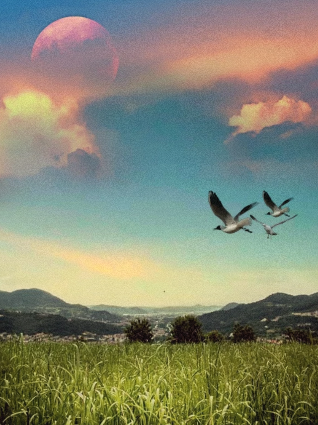 #freetoedit #myedit #madewithpicsart  #landscape #sky #clouds #field #birds  #remixit @picsart @freetoedit  remixed from @pajolie1 and @lasca