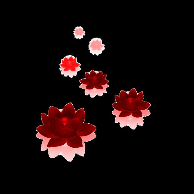 #freetoedit #red #lotusflowers #kellydawn