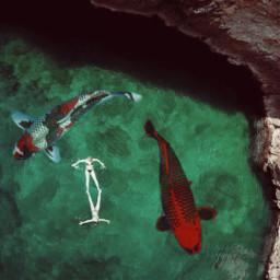 giantanimals giant animals fish fishes freetoedit