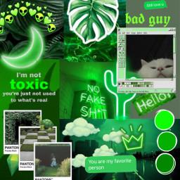 freetoedit greenaesthetics collage ccgreenaesthetic greenaesthetic createfromhome stayinspired