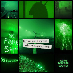 freetoedit challenge green collage greencolor ccgreenaesthetic greenaesthetic createfromhome stayinspired