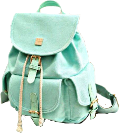 green mint backpack accessories purse freetoedit
