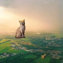 freetoedit catstickers deerseason grasslands ecgiantanimals giantanimals createfromhome stayinspired