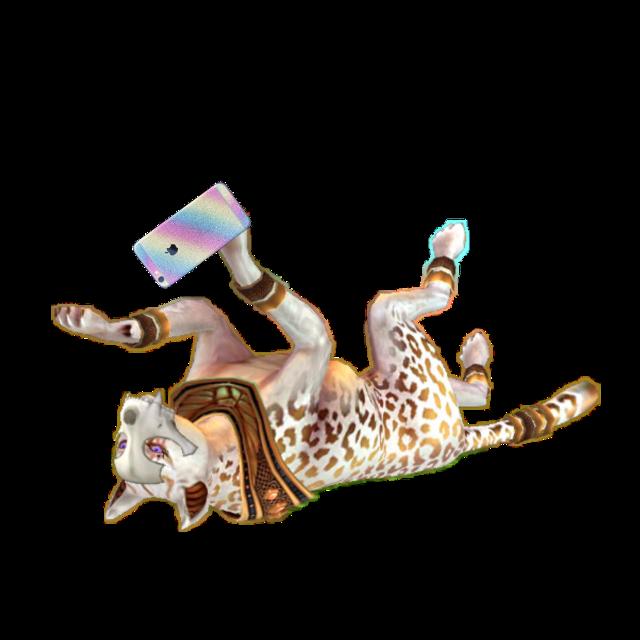 #wildcraftcheetah