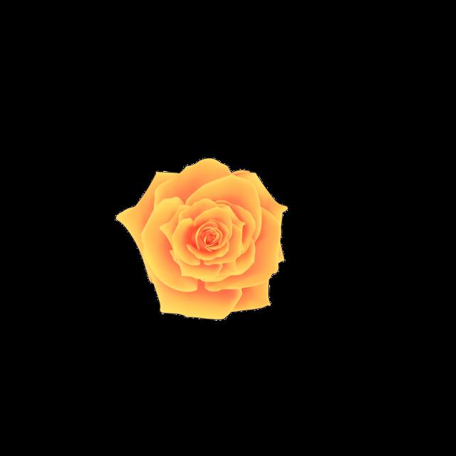 #flower #asthetic