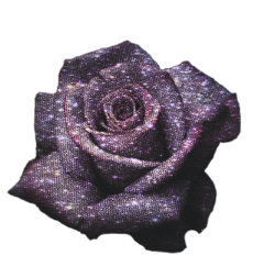 pngbyet glittercollection rose roses glitter freetoedit
