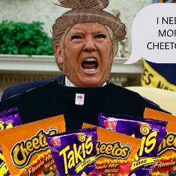 freetoedit cheetogirl cheetos trump whydidiletmyselfdothis