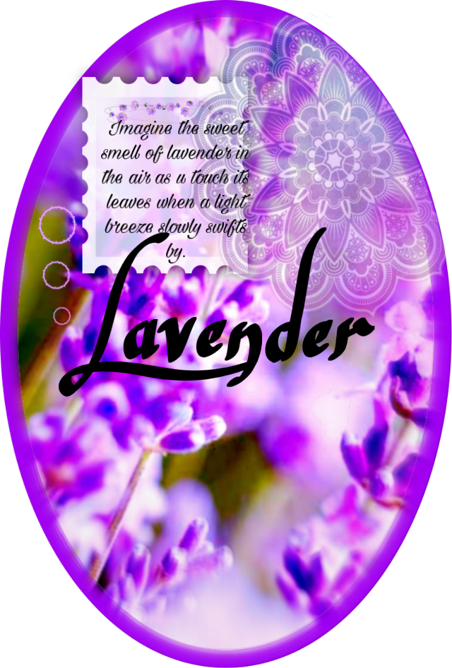 #lavender breeze