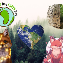 freetoedit nature przyroda natura inspiracje