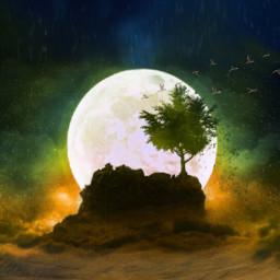freetoedit moon myedit bird landscape