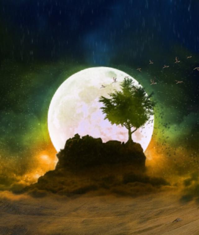 #freetoedit #moon #myedit #bird #landscape #mountain