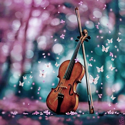 #freetoedit,#violin,#butterfly,#pink,#pinkflower,#srcpinkbutterflies