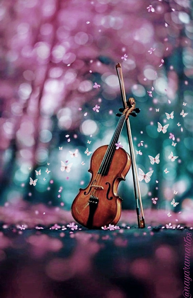 My Link: https://picsart.com/i/322703770136201?challenge_id=5e709c22e577a2610686d49d #freetoedit #violin #butterfly #pink #pinkflower  #srcpinkbutterflies #pinkbutterflies #createfromhome #stayinspired