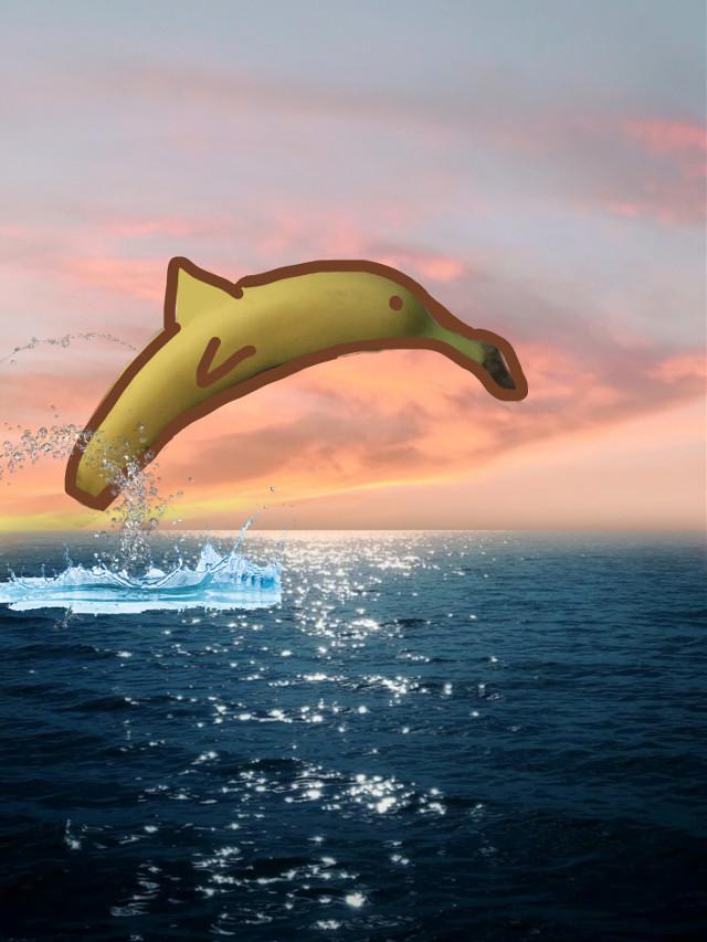 #freetoedit the very highly rare, banane dolphíne (buh-nae doll-f-een
