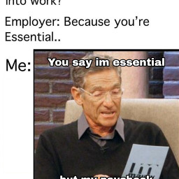 meme work maury