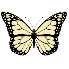 butterfly butterflys yellow spring aesthetic freetoedit