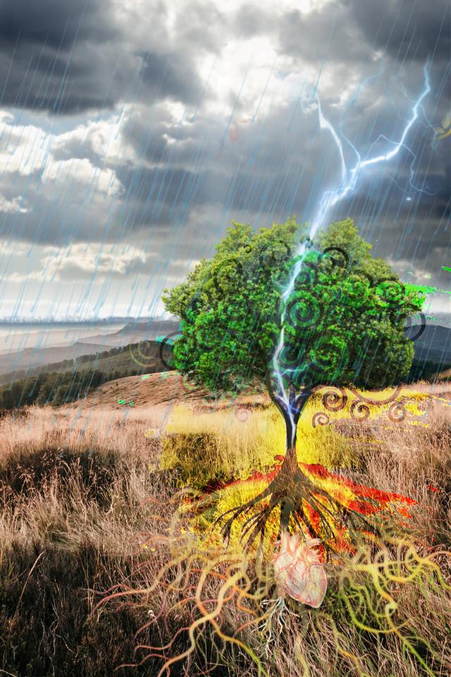 #freetoedit #roots #heart #treeoflife  #remixedcollection #remixed