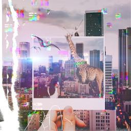 mydreamland thebest freetoedit ecdreamdestinations dreamdestinations