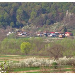 freetoedit followme followmeplease spring springtime