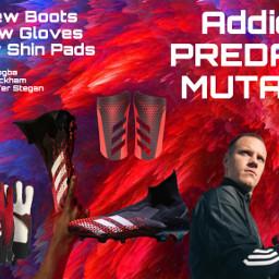 pogba terstegen beckham footballboots gloves