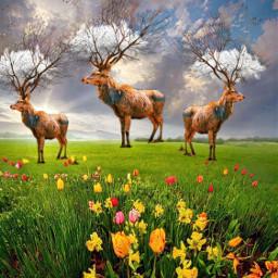 nature deer fantasy fantasyart madewithpicsart freetoedit