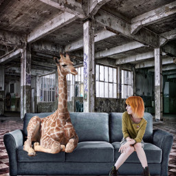 freetoedit girafe sofa pixabay humor